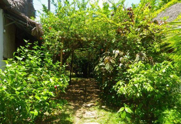 Extérieur des bungalows