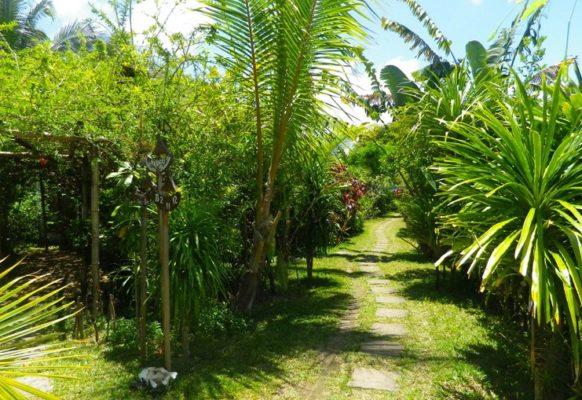 Jardin des bungalows Lakana hotel