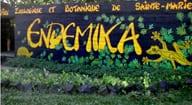Parc Endemika Lakana hôtel