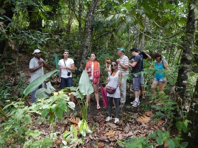 Excursion et visite trekking autour de l'île Sainte Marie
