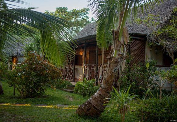 bungalow-jardin-lakana1